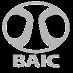 v-baici-300