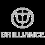 v-brilliance-300